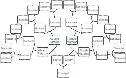 Árbol genealógico en árbol