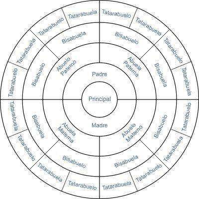 Arbol genealogico circular