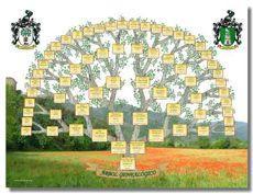 Representación gráfica del árbol genealógico