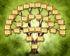 Ancestors Family tree Tree-shaped design