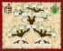 Descendants family tree Tree-shaped design