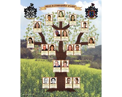 Mixed family tree Tree-shaped design